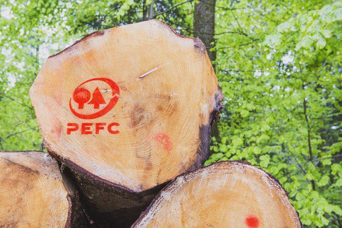 Cert.company will expandieren. Konzentration auf PEFC-Zertifizierung ...