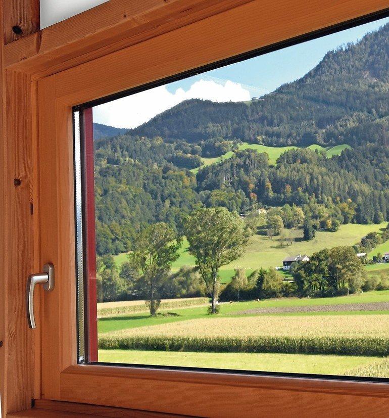 ADLER_Ligno+TopM_Fenster_beschnitten.jpg