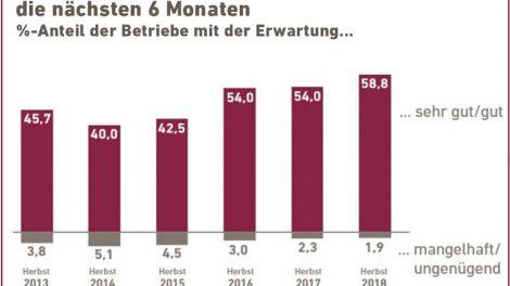 FSH_Bayern_Abb_4_Umsatzerwartung.jpg