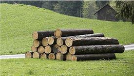 Holzschutztagung.jpg