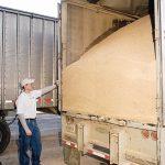 Trex_Recycling_Wood_Sawdust.jpg